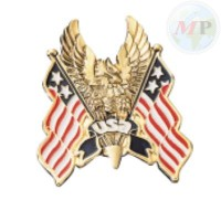 01-312 Emblem USA Flag Hawk Large