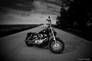Harley Davidson Photopin