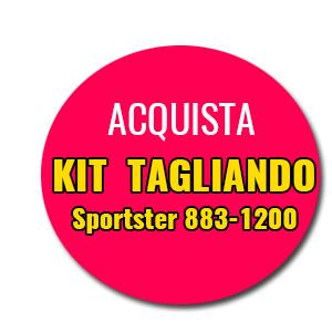 Kit Tagliando Sportster 883-1200 MotoPier Offerta